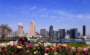 San Diego Skyline from Coronado Island with Roses in front